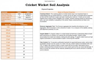 Cricket Wicket Analysis
